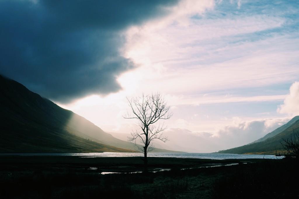 Glen Etive Lonely Tree