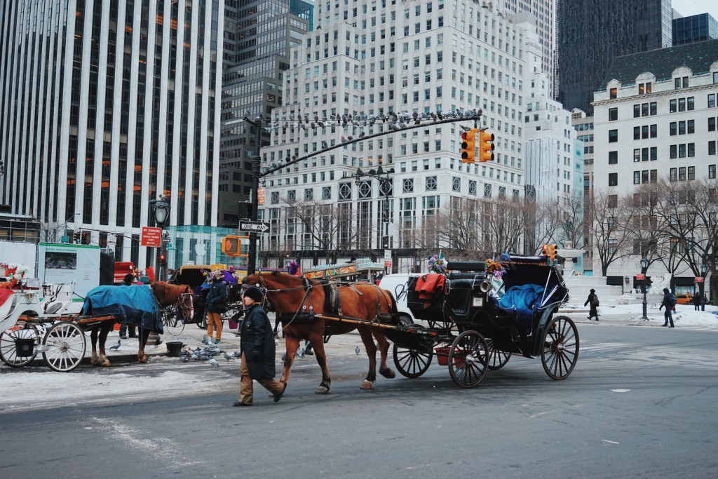 The iconic horse drawn carriages outside of Central Park. Before they are banned in NYC, I think I need to do it at least once in my lifetime. Perhaps soon...