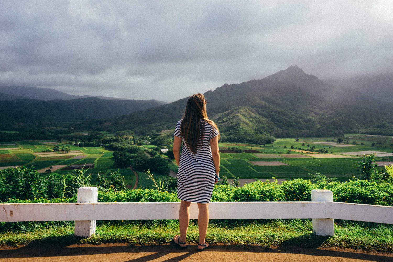 Hanalei-Valley-Lookout-Kauai-2-dante-vincent-photography