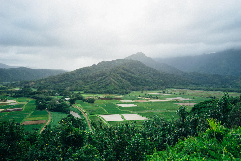 Hanalei-Valley-Lookout-Kauai-Dante-Vincent-Photography-2