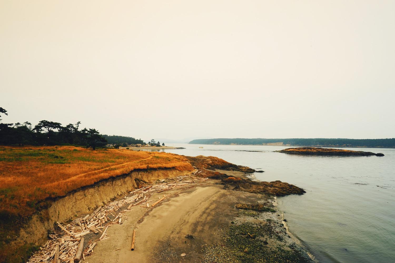 coastline-san-juan-island-dante-vincent-photography