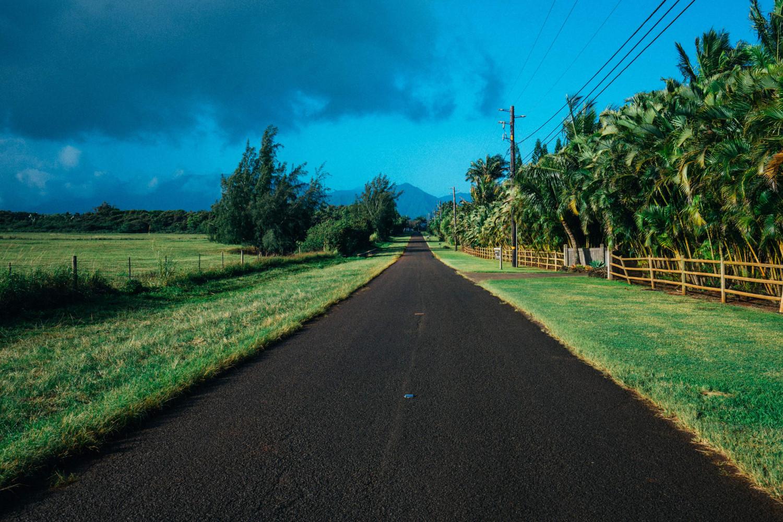 kauai-open-road-dante-vincent-photography