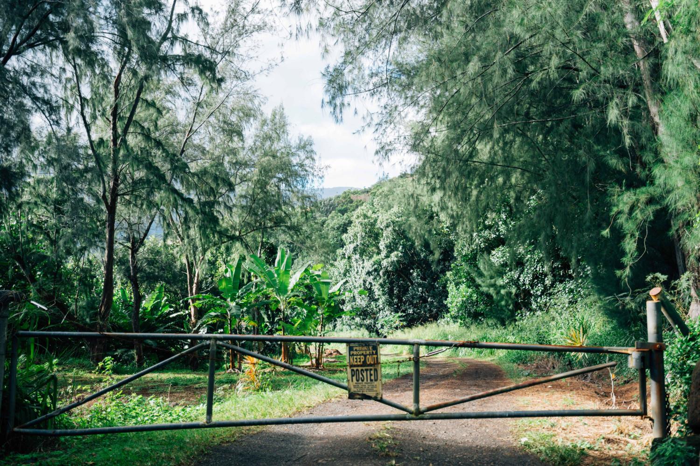 keep-out-kauai-dante-vincent-photography