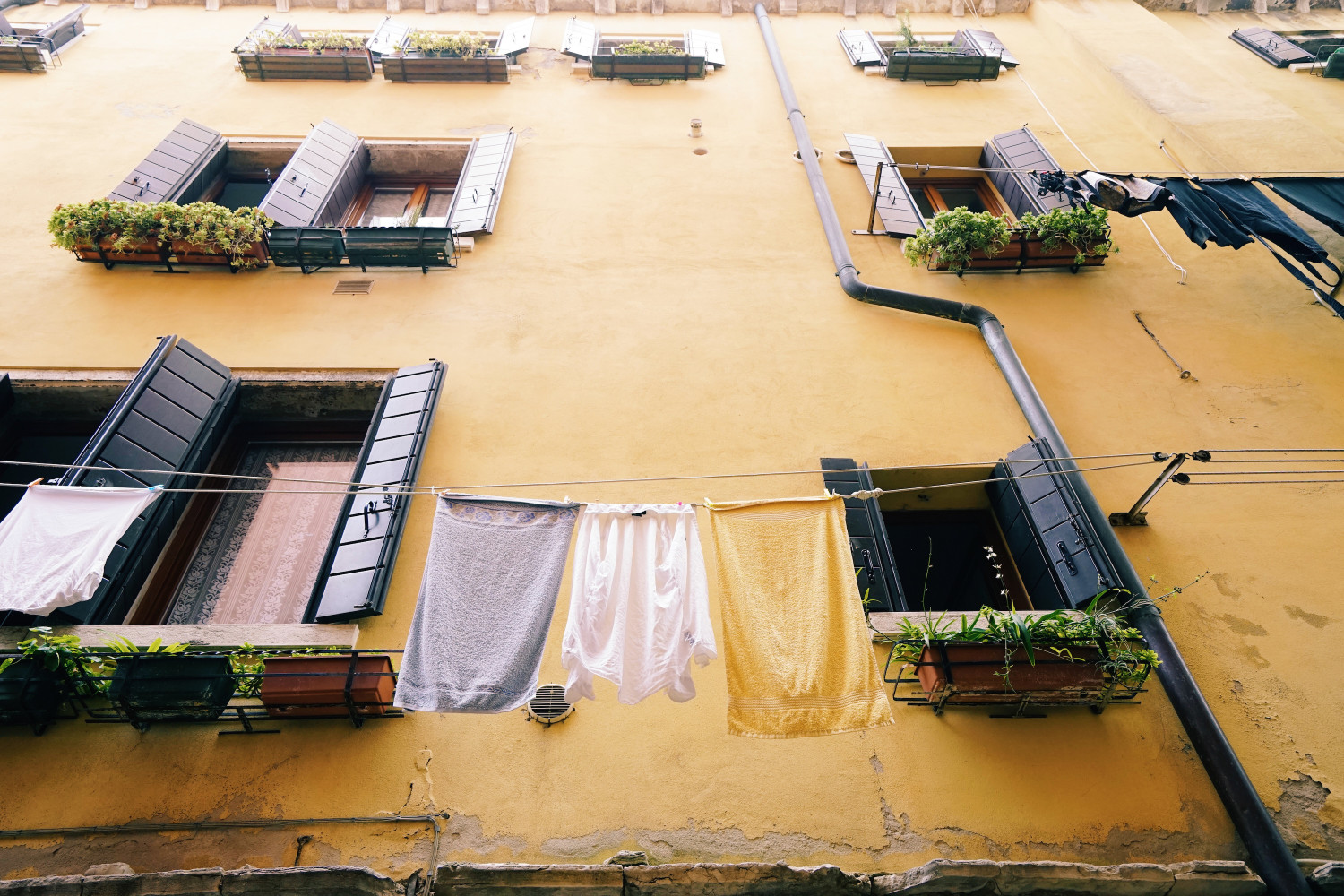 venice-yellow-and-laundry-dante-vincent-photography