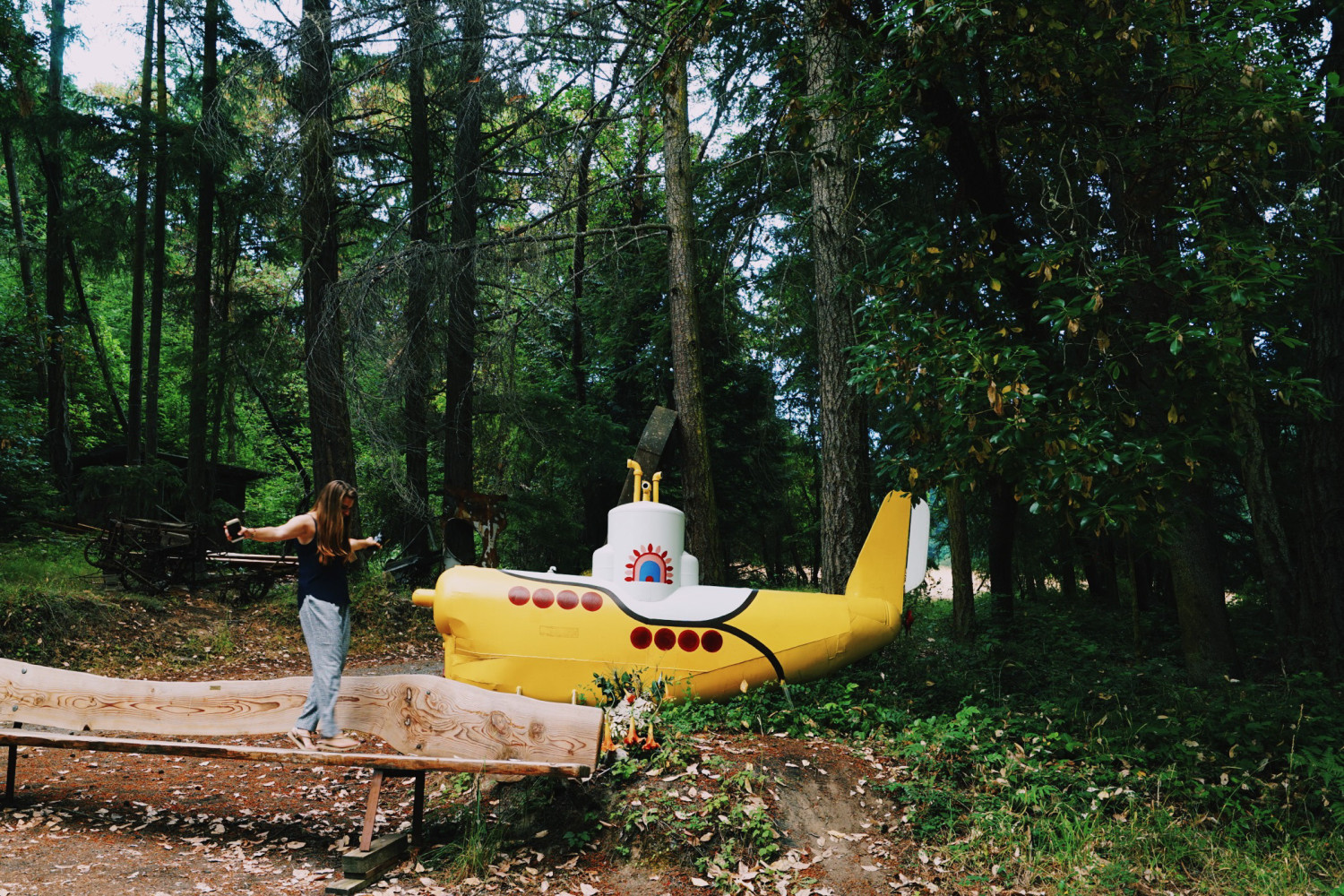 yellow-submarine-san-juan-island-dante-vincent-photography